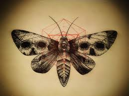 image result for butterfly skull book cover