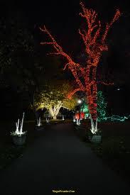 christmas light show toronto niagara falls winter festival of lights