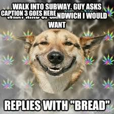 Subway Sandwich Meme - subway sandwich meme best sandwich 2017
