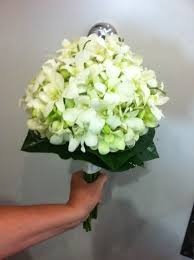 wedding flowers singapore bridal bouquet of white singapore orchids bridal bouquets