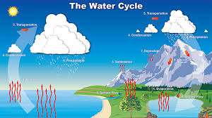 water cycle water cycle song the water cycle for kids the