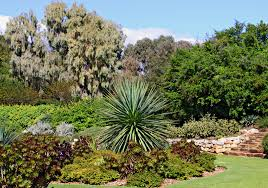 Drought Friendly Landscaping by Drought Tolerant Gardening The Cheaper Landscape Alternative