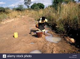 Hols by Tanzania During The Dry Season People Fetch Water By Digging Hols