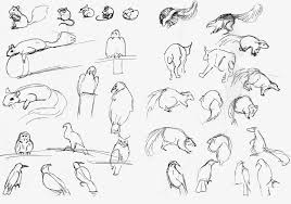 gesture sketches the art and animation blog of kaitlyn fuchs