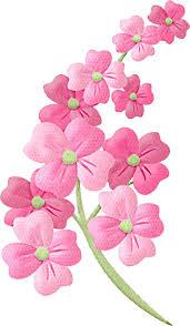 flower clipart pictures clipartfest