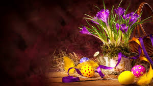 hd happy easter wallpaper download free 2560x1440px 3d easter