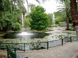 Botanical Gardens Brisbane Cafe City Botanic Gardens Brisbane All You Need To Before You