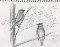 simple pencil sketches of nature archives pencil drawing collection