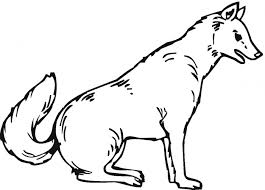 wolf coloring pages nice coloring pages 2091 unknown