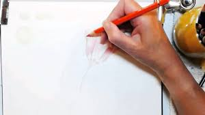 poppy writing paper painting a watercolor pencil poppy youtube