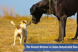 Honest Kitchen Dog Food Reviews by My Biased Thoughts On The Honest Kitchen And Sojos Keep The Tail
