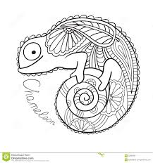 chameleon coloring page google search embroidery pinterest