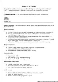 Curriculum Vitae Format Pdf Professional Resume For Freshers Pdf Free Samples Examples