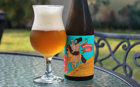 florida beer review monsieur ed from green bench brewing with
