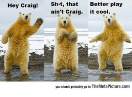 Polar Bear Meme - 25 best memes about hey craig polar bear hey craig polar