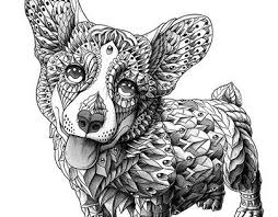 183 best golden images on pinterest draw coloring books and