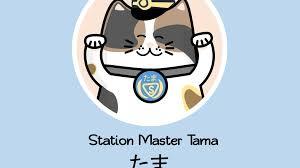 cat greeting cards by mark u2014 kickstarter