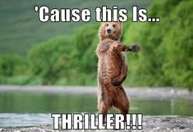 Funny Bear Meme - funny brown bears dancing pictures with captions