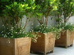 large wooden planters for trees large wooden planters for modern