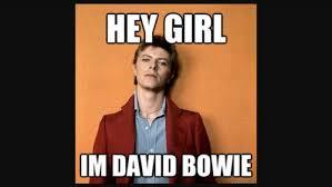 Bowie Meme - david bowie images david bowie meme hd wallpaper and background