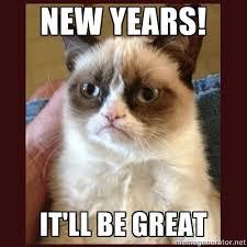 Happy New Year Cat Meme - happy new year 2017 general discussion jmonkeyengine hub