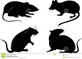 nine rat silhouettes royalty free stock photo image 5846195