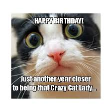 Cat Meme Ladies - 150 happy birthday memes dank memes only