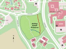 Stony Brook Map Visit Us