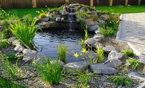 17 back yard fountain pond designs 67 cool backyard pond design