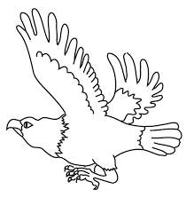 amazing eagle coloring pages cool ideas 7448 unknown
