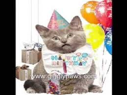 template free birthday ecards singing cats as well cat birthday cards gangcraft net