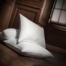 Goose Or Duck Down Duvet Goose Or Duck Feather Down Pillows Natural Filling Dumas Paris