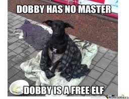 Sock Meme - master gave dobby a sock compression socks