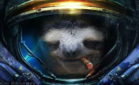 Astronaut Sloth Meme - astronaut sloth on r starcraft and r trees combined funny