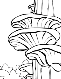 oyster coloring page handipoints