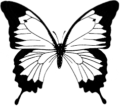 ulysses butterfly coloring animals town animals color