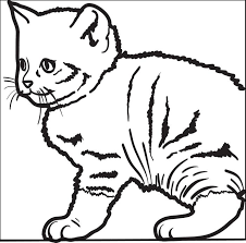 kitten coloring pages to print free printable cute kitty cat coloring page for kids