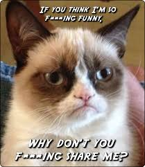Meme Blogs - grumpy cat sells blogs meme anonamos3021