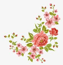 decorative flower decorative flower png images vectors and psd files free