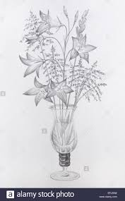 Vase Drawing Pencil Drawing Of Flowers In A Glass Vase Grayscale On Cartridge