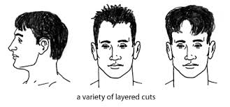 popular hair cuts for tall head hudson s guide men s short haircuts and the barber shop