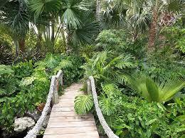 outdoors rock garden with wooden garden bridge over watterfall