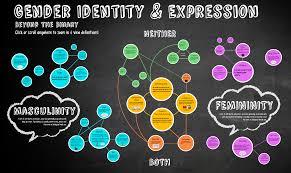 identity map gender identity map impact program