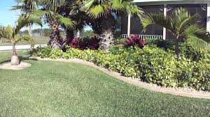 low maintenance front yard tropical landscape by pany garden trends