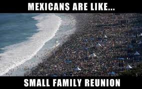 Funny Racist Mexican Memes - mexicans are like small family reunion