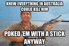 Aussie Memes - whatever memeification pinterest aussie memes and memes