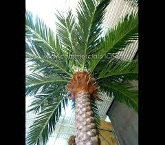 outdoor palm tree l outdoor artificial date palm trees outdoor silk palm trees