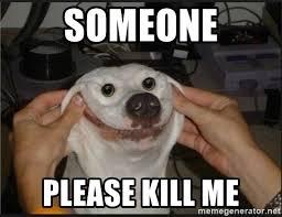 Please Kill Me Meme - someone please kill me snowflap meme generator