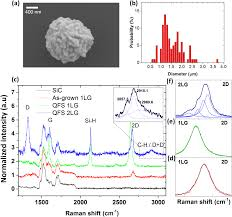 surface and interface structure of quasi free standing graphene on