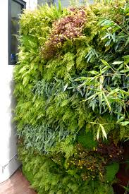 Wall Gardening System by Luxurious Urban Oasis Fern Walls U2014 Florafelt Vertical Garden Systems